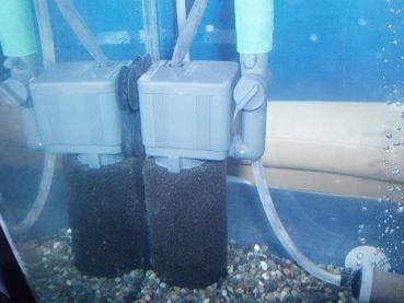 コメ水槽水中ポンプ化02