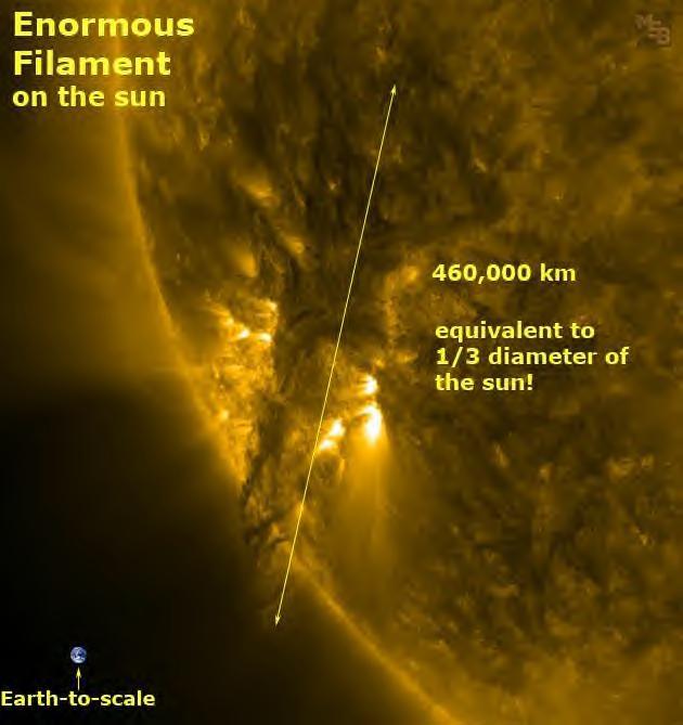 太陽フィラメント