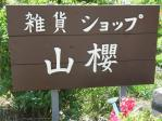 20100516淡路 山櫻