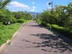 20100806公園の道