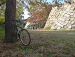20101120櫓自転車