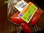 20101123トマト