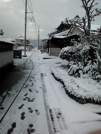 2012_0203_071202AA.jpg