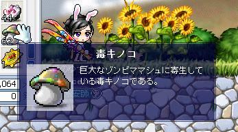 shougou4.jpg