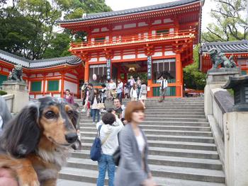 京都1P1070398