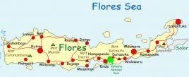 floresmap_20111006212327.jpg