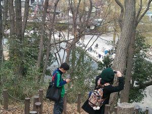 赤塚城址山頂から眼下を望む
