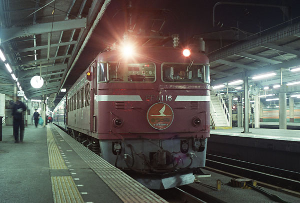 0431_16nef81.jpg