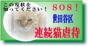 世田谷区連続猫虐待