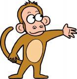 手を出す猿