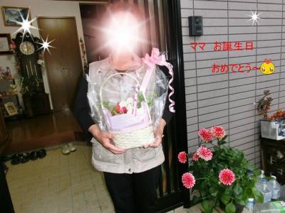 CIMG8857_20110511215121.jpg