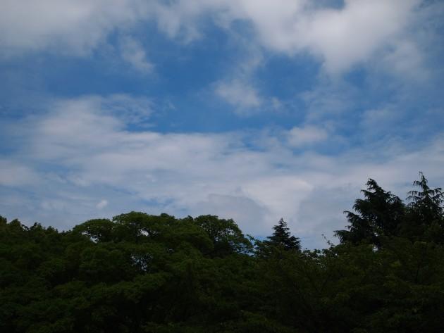 004_20100621223235.jpg