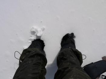 大雪2010年 331