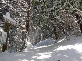 大雪2010年 318
