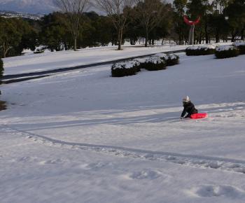 大雪2010年 429