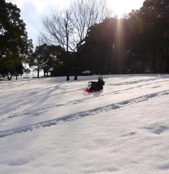 大雪2010年 416 - コピー