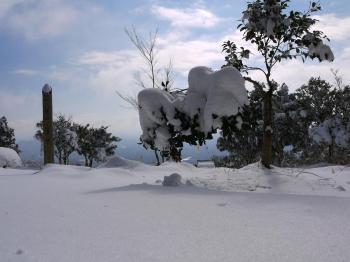 大雪2010年 326