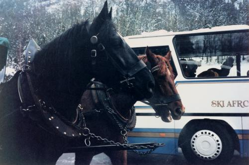 バスと馬車