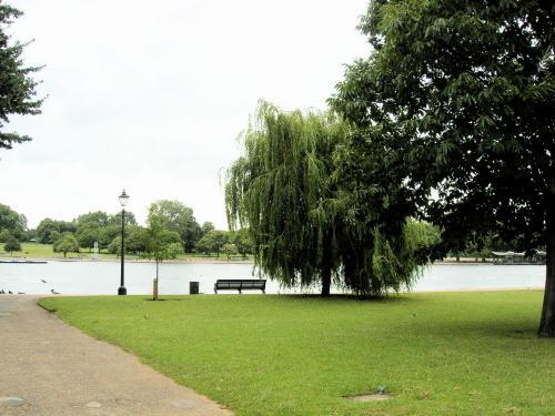 ハイドパーク・池