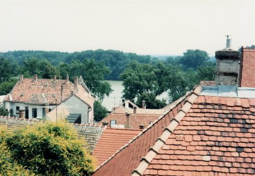 センテンドレの屋根