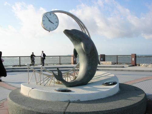 イルカの時計