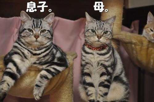 002_20120124104107.jpg