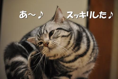 002_20120202095714.jpg