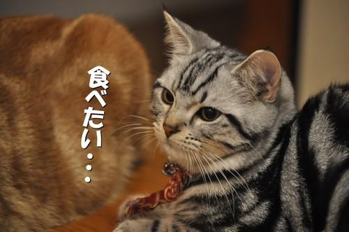 006_20111017100829.jpg