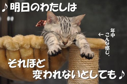 024_20120107200539.jpg