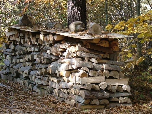 ニセアカシアの薪