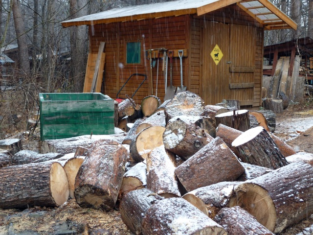 雪をかぶる玉切りの木
