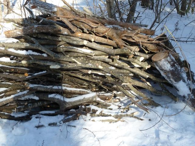 ストーブ用の薪になる広葉樹