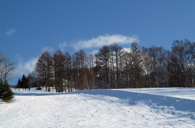 白樺高原国際スキー場 平日の風景