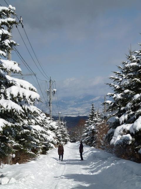 冬の散歩 牧場へ向う