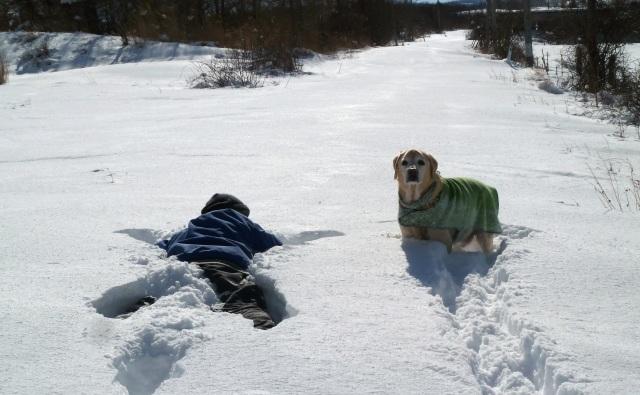 雪の中へダイビング