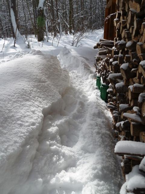 大量の積雪