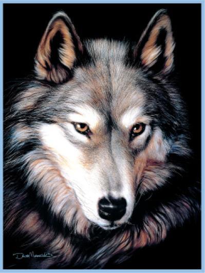 藍のオオカミ