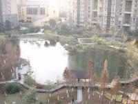 マンション池