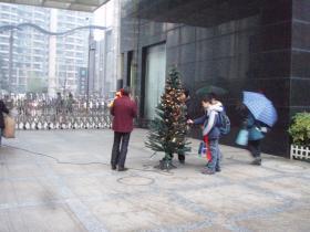 マンションクリスマスツリー
