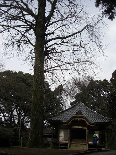 文殊山 092
