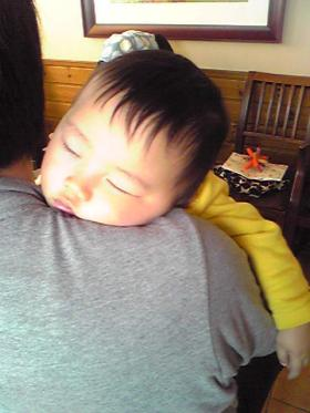 0119 熟睡タロさん