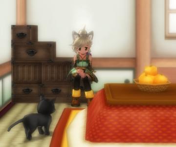 階段箪笥と蜜柑コタツ