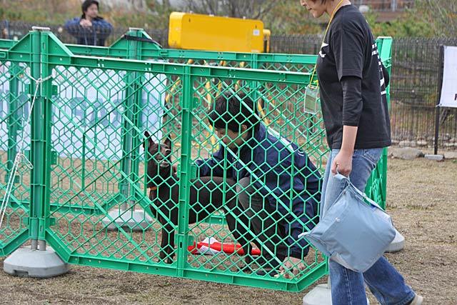 2009 11 01 レジーナの森カップ  (36)