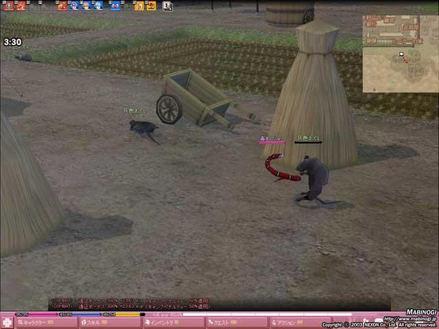 mabinogi_2010_01_25_004.jpg