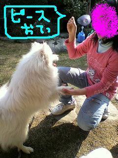P1010116_20100228230446.jpg