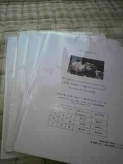 2011042515470001.jpg