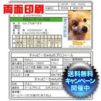 愛犬免許証 両面
