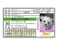 愛犬免許証 片面