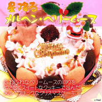 星降るメルヘン・ベリームース☆犬用クリスマスケーキ