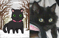 ペットアバター「猫」